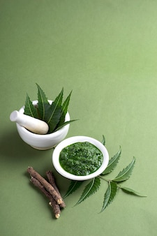 Medicinal neem leaves in mortar and pestle with paste and twigs on green surface