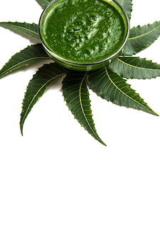 Medicinal neem leaves with paste in bowl on white background.