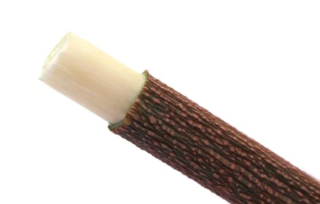 Лекарственные веточки нима, используемые в качестве травяной зубной щетки