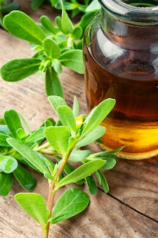 Medicinal tincture from purslane