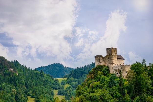 Средневековый замок на зеленом летнем холме в недзице, польша