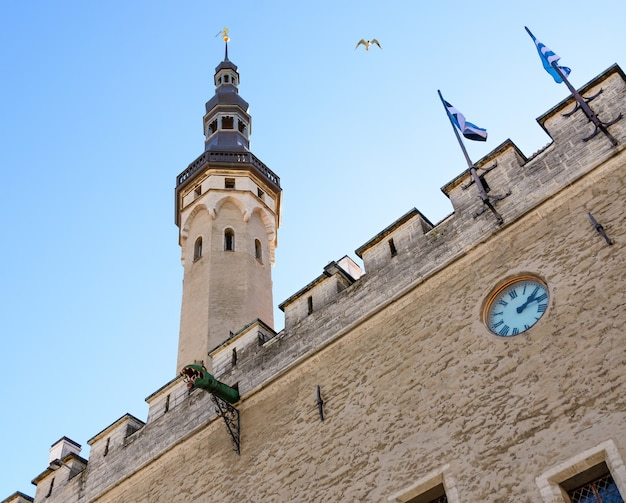 에스토니아의 수도 탈린의 중세 시청 타워