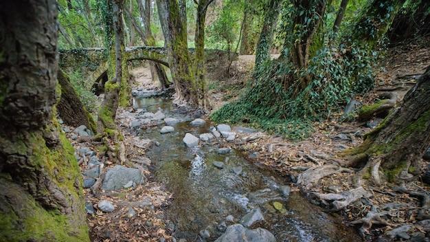 16세기에 베네치아인들이 지은 파포스 숲의 중세 석교 키프로스 랜드마크