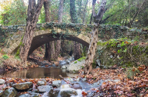 Средневековый венецианский мост на кипре