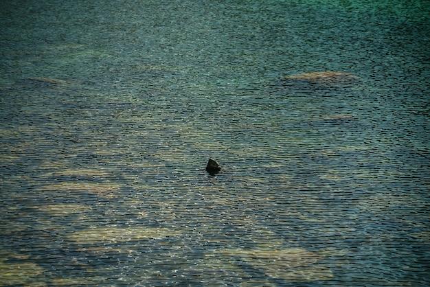 山の湖の瞑想的な波紋。日光の下で氷河湖のターコイズブルーの透明な水の石の底の美しいリラックスした背景。緑の澄んだ水にたくさんの石がある日当たりの良い背景。