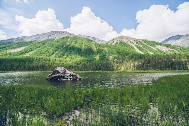 Meditative view to beautiful lake with stone in valley by a mountain with forest. scenic relaxing green landscape with big mossy stone in mountain lake. alpine lake with ripples on water.