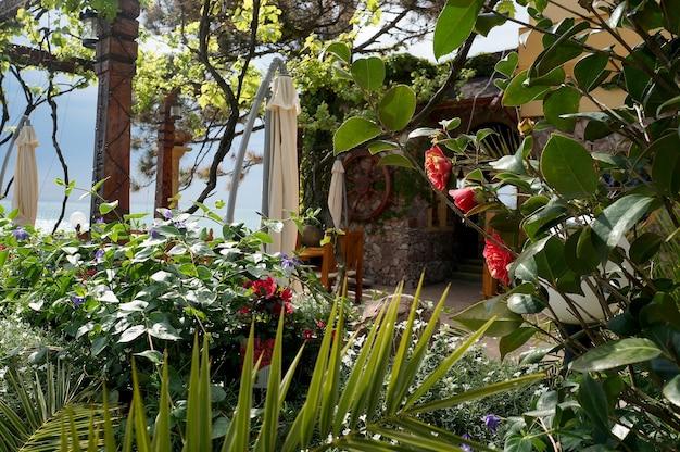 Mediterranean style green plants terrace decoration