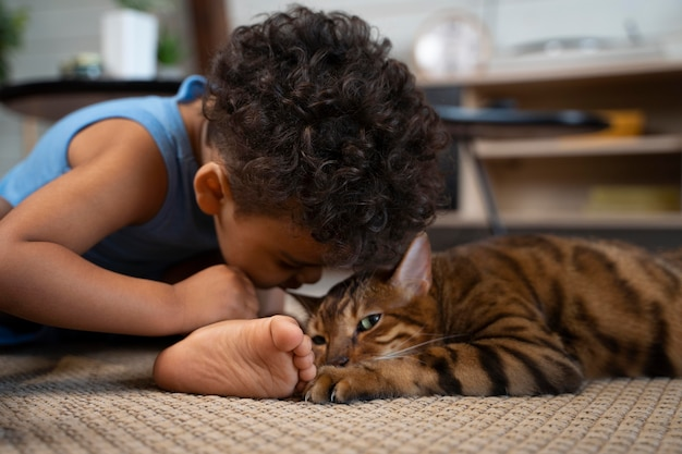 猫を見ているミディアムショットの少年