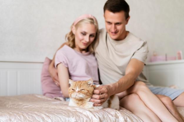 Gatto accarezzato di coppia a colpo medio