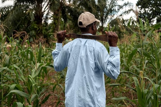 Contadino a colpo medio nel campo di grano