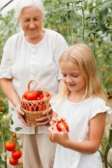 ミディアムショットのおばあちゃんとトマトの女の子
