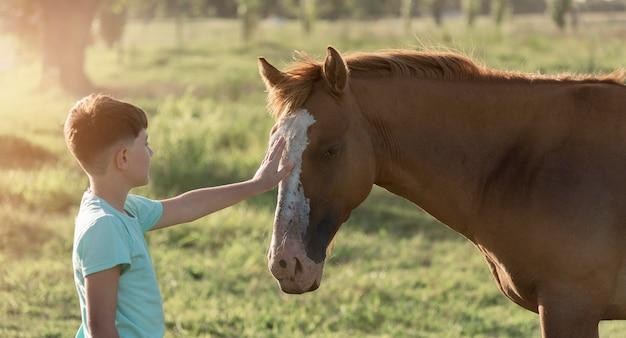 ミディアムショットの子供が馬をかわいがる