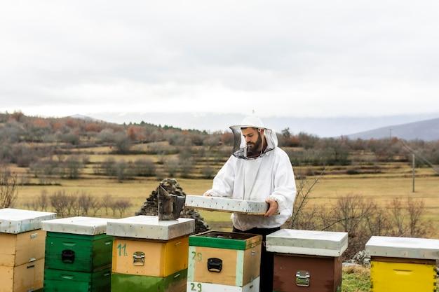 ミディアムショットの男がミツバチをチェック