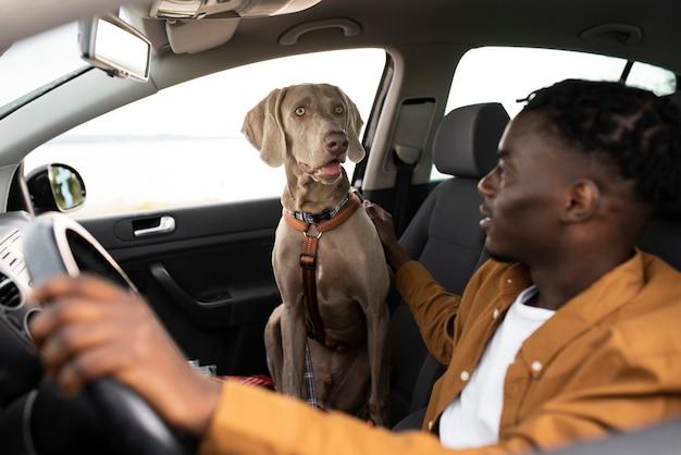 Uomo di tiro medio che guarda un cane