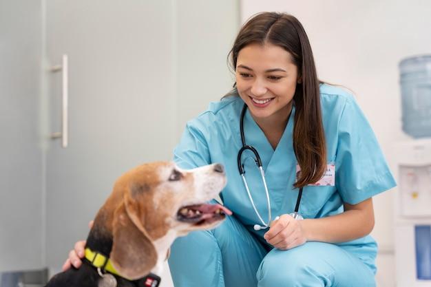 Veterinario di tiro medio e cane carino