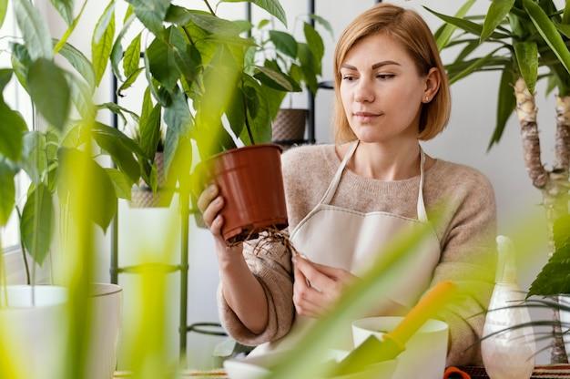 Donna del colpo medio che tiene le radici delle piante