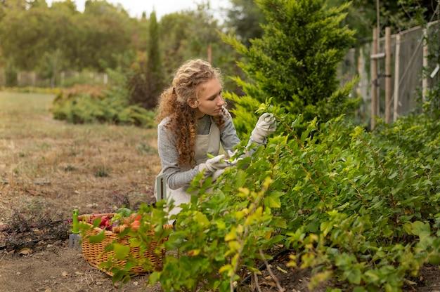 식물을 바라보는 미디엄 샷 여성