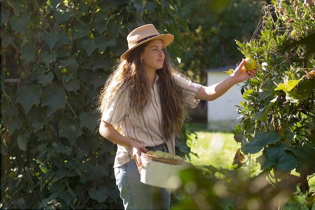 Женщина среднего выстрела, собирающая фрукты