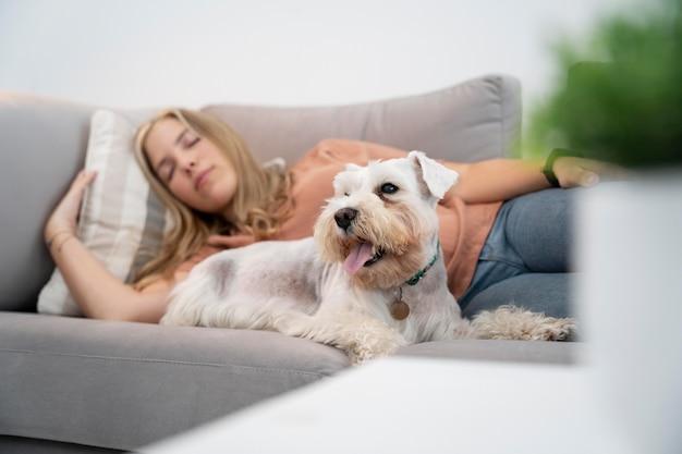 Donna del tiro medio che dorme con il cane sul divano