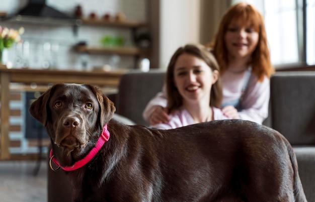 ミディアムショットの女性とかわいい犬