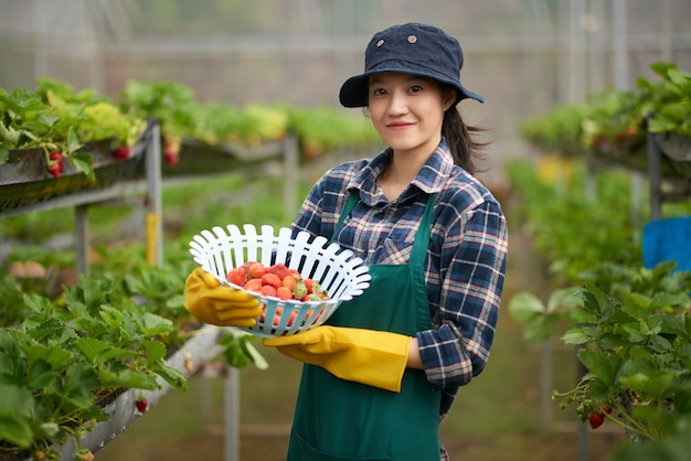 Medium shot of young asian woman in farmer overall holding a basket of ripe strawberries