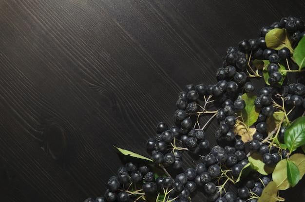 暗いテーブルの背景に枝黒チョークベリー(アロニアmelanocarpa)
