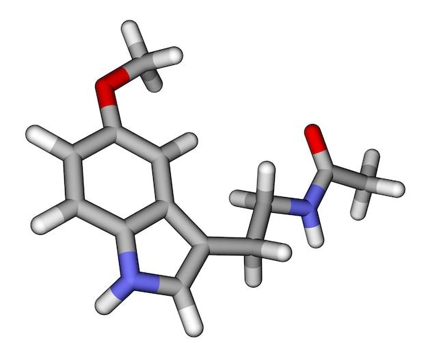 Молекулярная модель мелатониновых палочек
