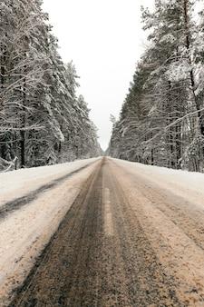 森に建てられた車の舗装道路で溶けた雪