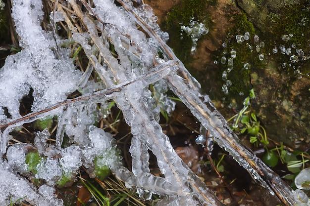Тающий снег на траве в солнечный зимний день