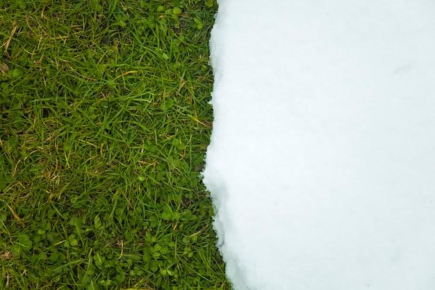 緑の芝生に雪が溶けてクローズアップ