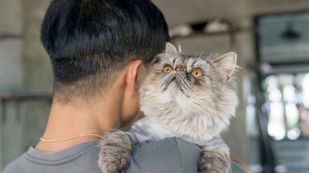 Men carrying a gray striped persian cat.