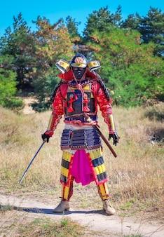 Мужчины в самурайских доспехах с мечом