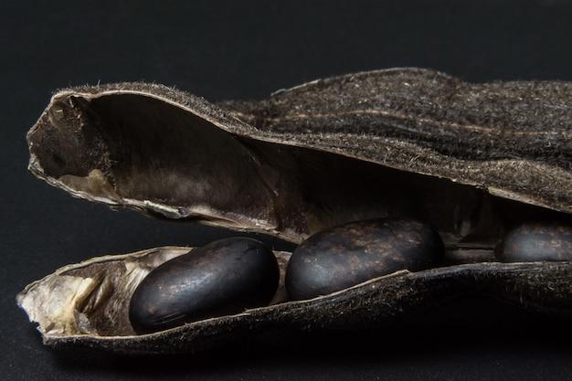 男性pruriens食品mucuna背景束