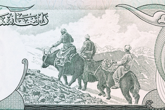 Men riding on yaks from old afghani money