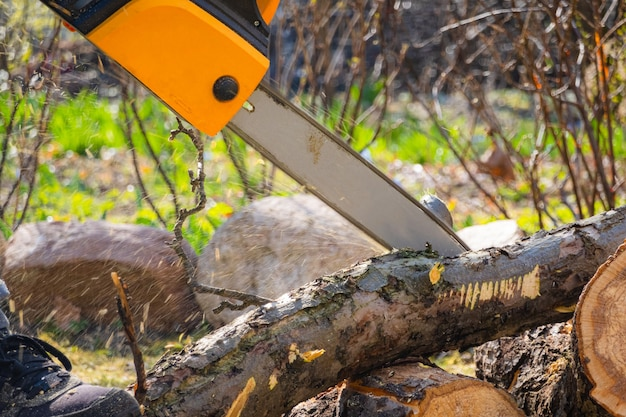 Men sawing apple tree with a chainsaw in his backyard.