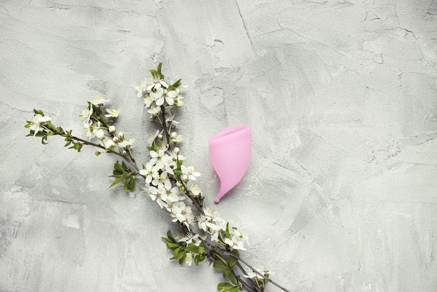 Menstrual cup and white flowers on gray background