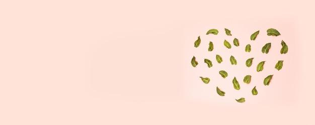 Листья мяты mentha spicata образуют сердечко на розовом