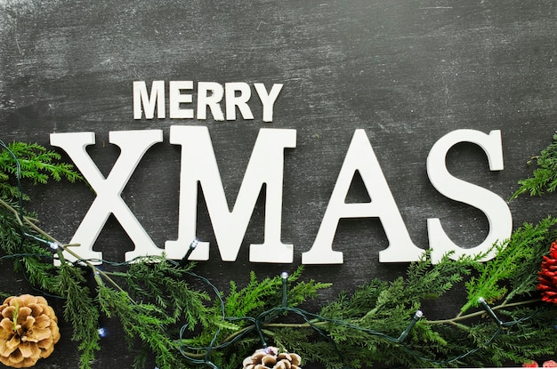 Merry xmas inscription with branches