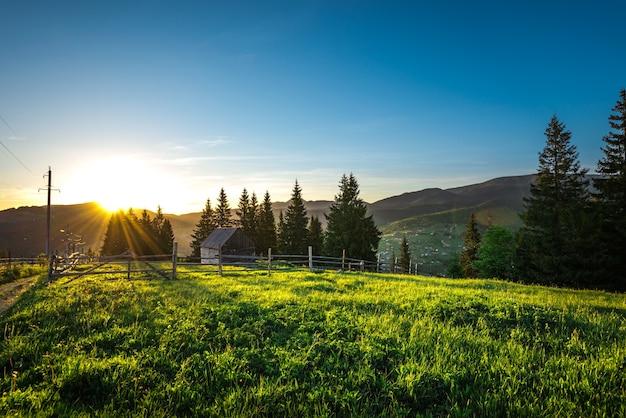 Завораживающий красивый пейзаж холмов с зеленой травой