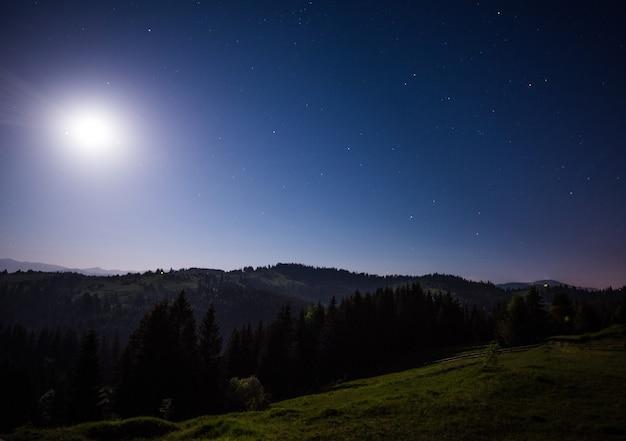 青い星空を背景にした緑の丘と針葉樹林の魅惑的な夜景