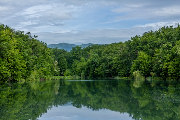 물에 비친 자그레브의 아름다운 자연의 매혹적인 장면