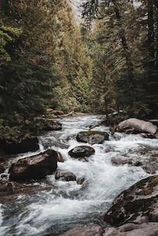 イエローストーン国立公園、イエローストーン リバー キャニオン アメリカのアッパー フォールズでの魅惑的なショット Premium写真