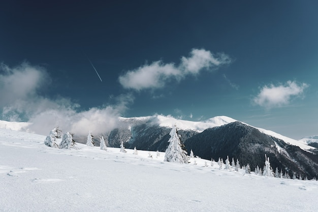 Mesmerizing view of the carpathian mountains covered in the snow in romania