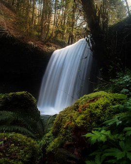 Завораживающий вид на красивый водопад