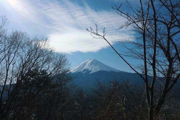 Завораживающий вид на гору фудзи под голубым небом с деревьями на переднем плане.