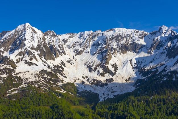 Vista affascinante delle montagne rocciose coperte di neve con alberi in primo piano