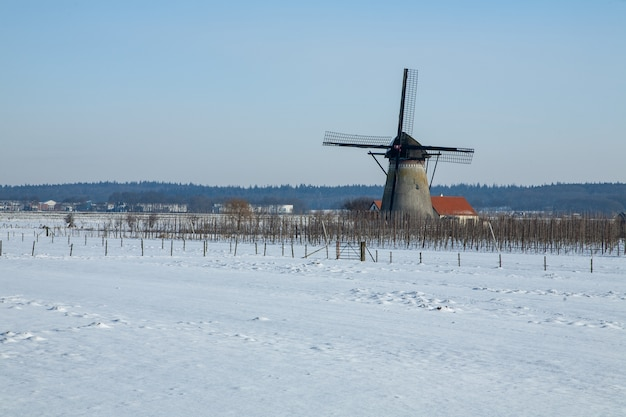 オランダのふわふわの雪に覆われた魅惑的な冬の風景