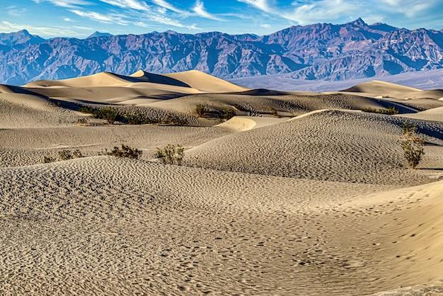 Мескитовые плоские песчаные дюны в национальном парке долина смерти в калифорнии, сша