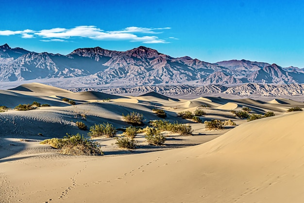 Mesquite sand dunes at death valley national park in california, usa