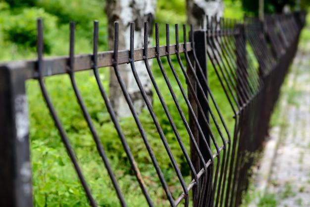 緑豊かな公園の金属柵